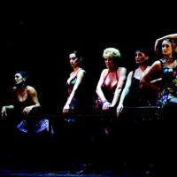 Fosse (2002) - Simone Kleinsma, Pia Douwes & Cast - (c)Roy Beusker