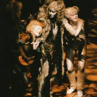 Cats (1987) - Frans Schraven, Pia Douwes, ... - (c)E.J.M. Douwes